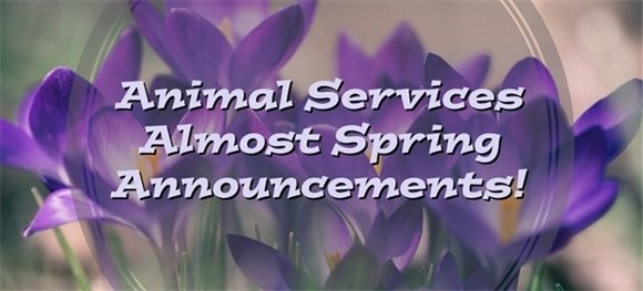 Animal Services Almost Spring Announcements