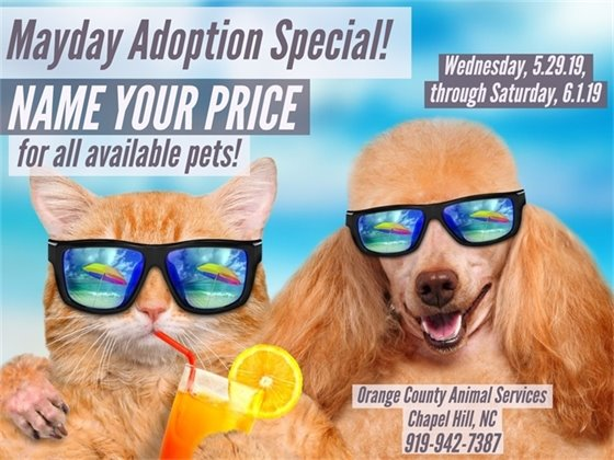 Mayday Adoption Special
