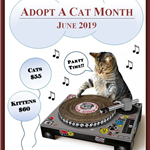 CatAdoptionMonth_forWeb_2019
