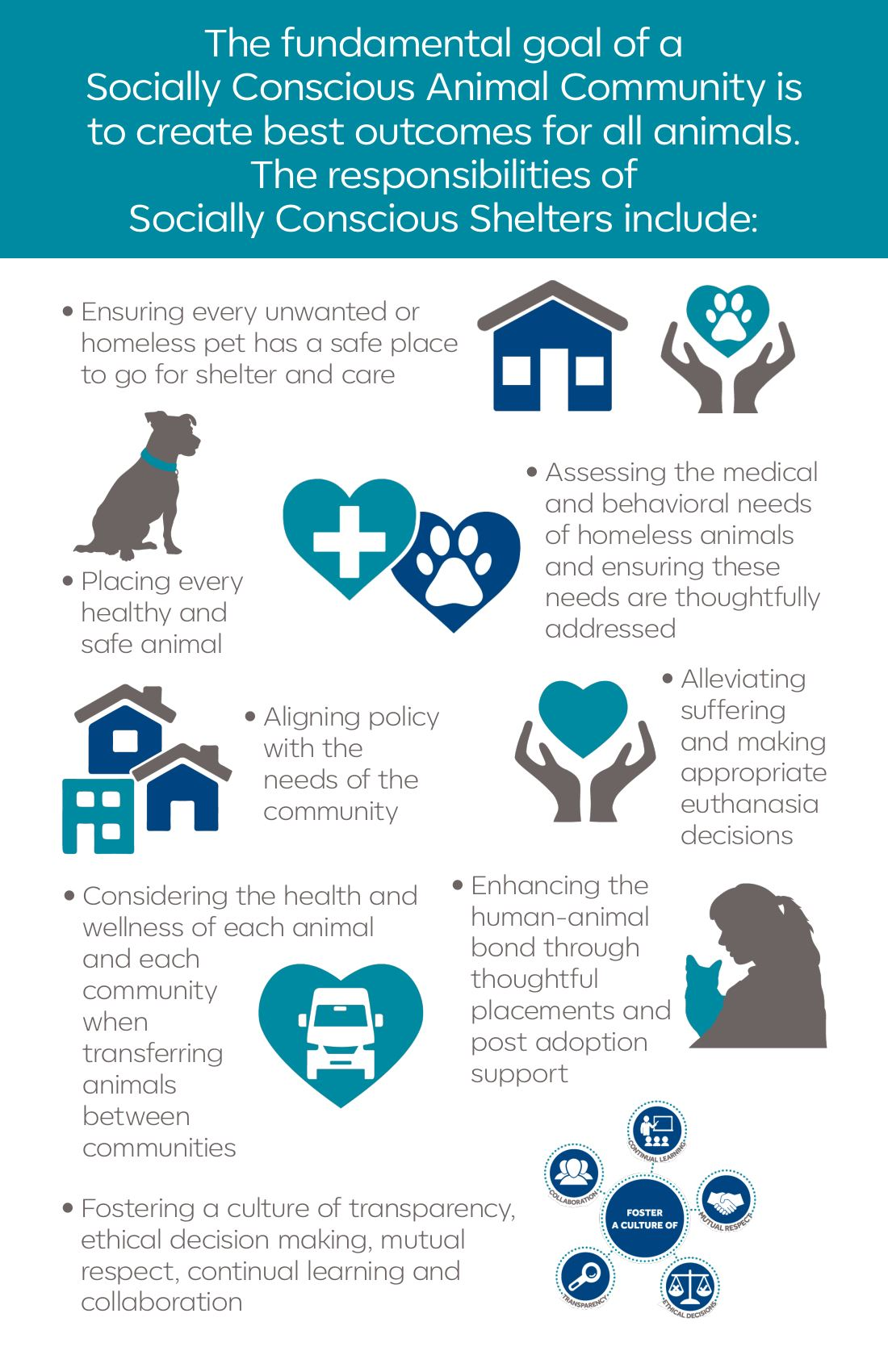 Responsibilities for socially conscious animal shelters