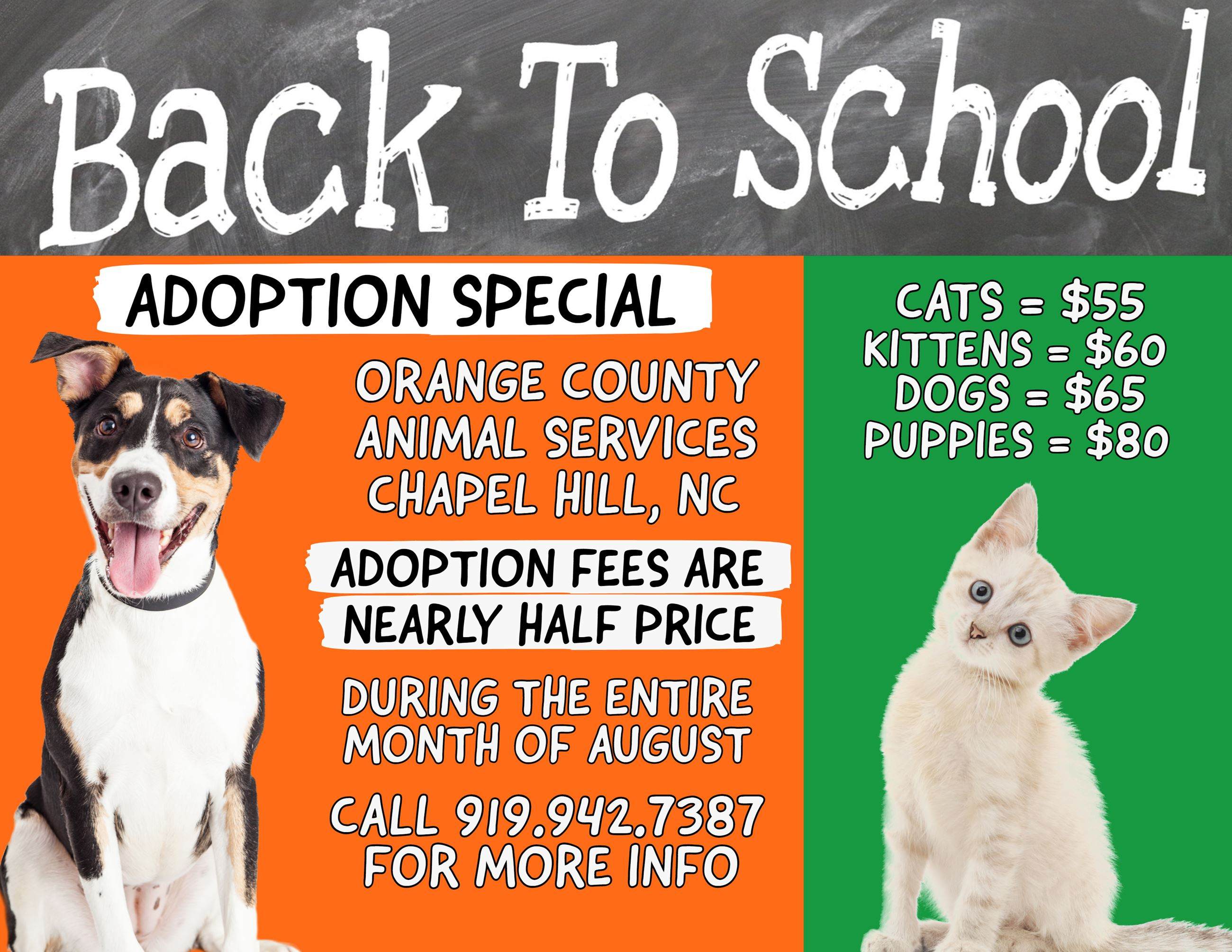 Back To School Adoption Special