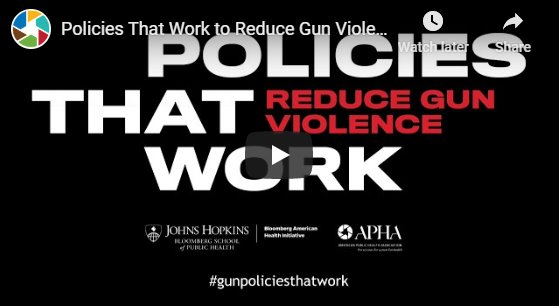 Reducing Gun Violence