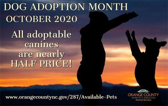 Dog Adoption Month graphic