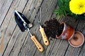 Garden tool set, pot, soil and flower.
