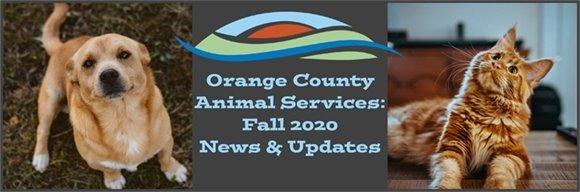 OCAS: Fall 2020 News And Updates