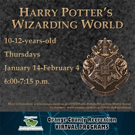 Harry Potter's Wizarding World - ages 10-12-years-old