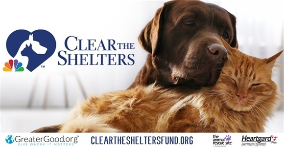 Clear The Shelters 2020