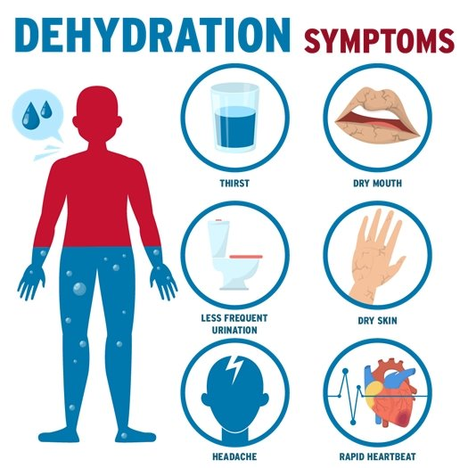 dehydration symptoms: thirst, dry mouth, less frequent urination, dry skin, headache, rapid heartbeat