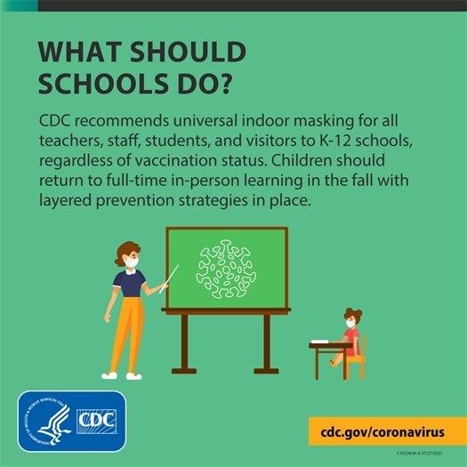 What should schools do?