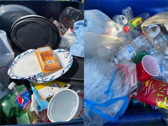 contamination pictures 2
