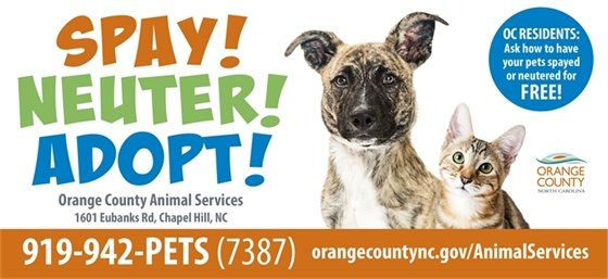 Spay neuter adopt graphic