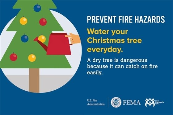 Prevent fire hazards: Water your Christmas tree everyday. A dry tree is dangerous because it can catch on fire easily.