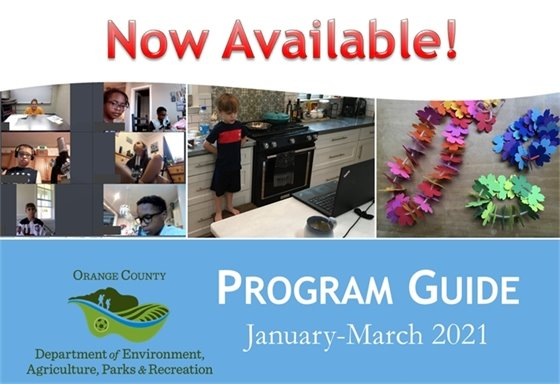 Recreation Program Guide graphic