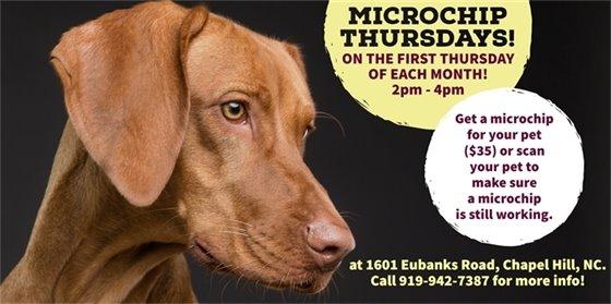 Microchip Thursdays