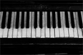 Piano - Organ Keyboard