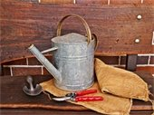 Watering Can - Gardening Tools