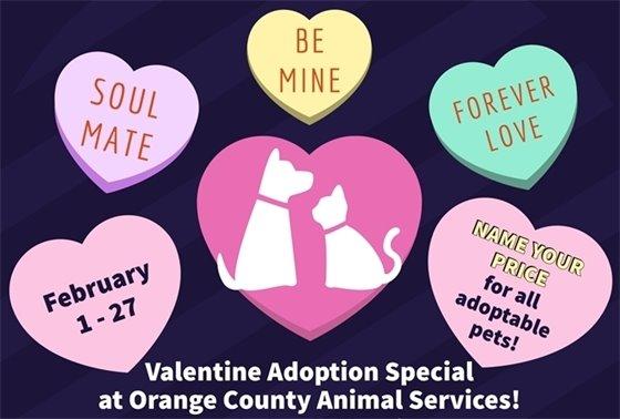 Valentine Adoption Special