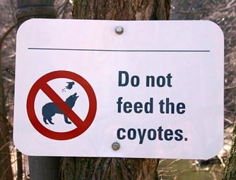 Do Not Feed the Coyotes Sign
