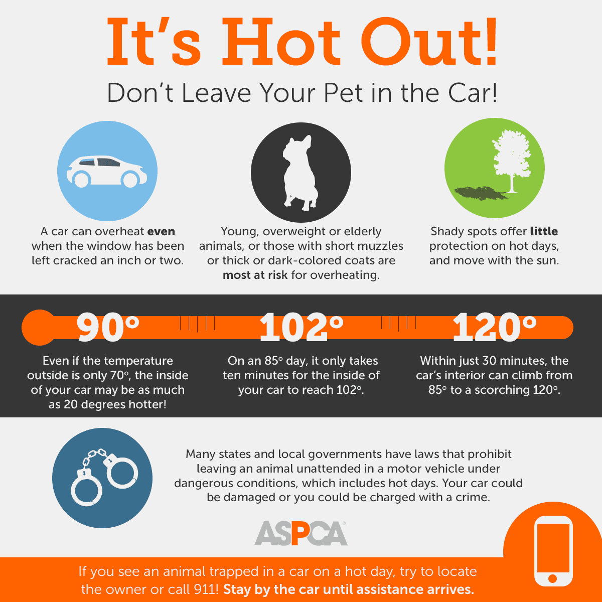 Do not leave pets in hot cars