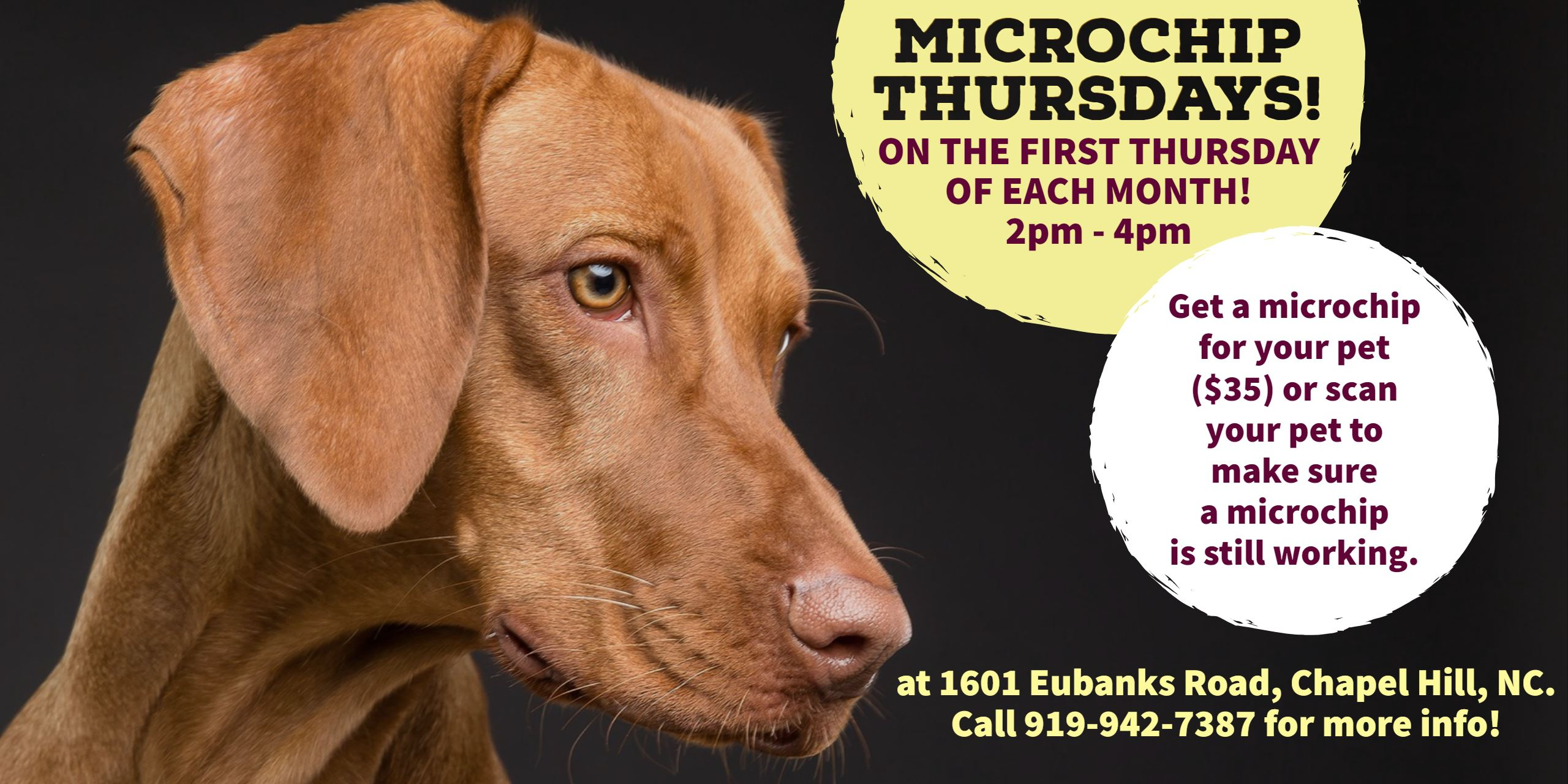 Microchip Thursdays!